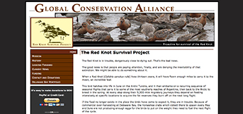 Global Conservation Alliance by TreeLine Web Design